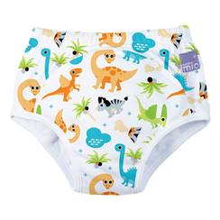 Picture of Potty Training Pants